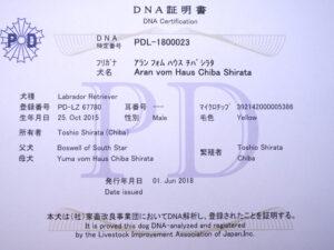 DSCF7031_fix